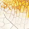 Golden Crackle Paste Swatch